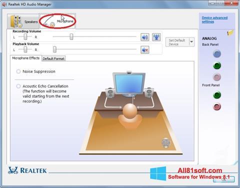 Screenshot Realtek Audio Driver untuk Windows 8.1