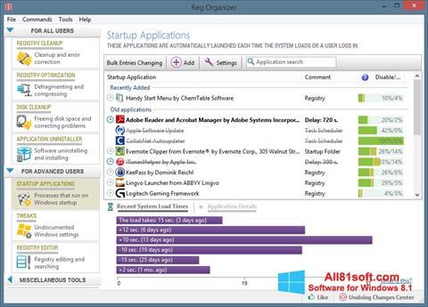 Screenshot Reg Organizer untuk Windows 8.1