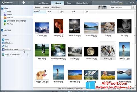 Screenshot RealPlayer untuk Windows 8.1